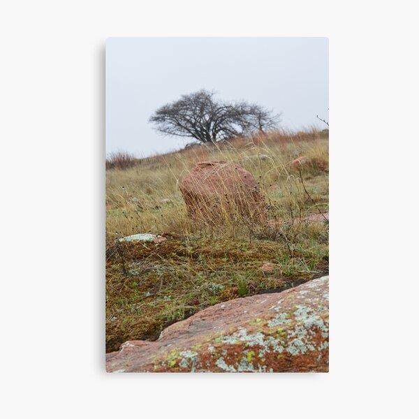Oklahoma Wilderness Canvas Print