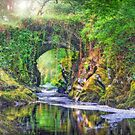 Mysterious River Machno, North Wales by Mal Bray
