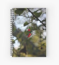 A wild redcurrant growing in the forest Spiral Notebook