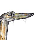 GREYHOUND g921 by Hares & Critters