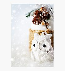 Snow Christmas decoration with fairy white reading owl Photographic Print