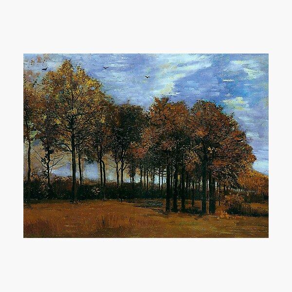 Autumn Landscape , 1885 by Vincent Van Gogh (Remastered) Vintage fine art impressionism oil painting Photographic Print