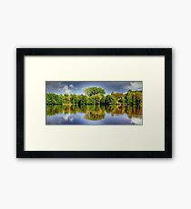 forest mirroring Framed Print