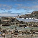Hartland Quay Coast by Avril Harris