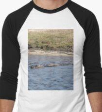 Alligator in the Water Men's Baseball ¾ T-Shirt