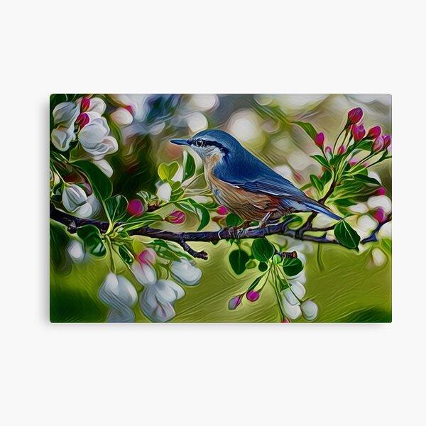 Blue Bird Oil Painting Canvas Print