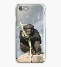 Chimp iPhone Case/Skin