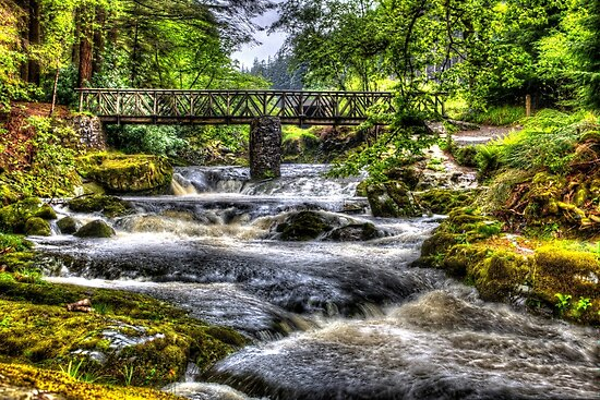 Tollymore Forest Park 2 by rosscaughers
