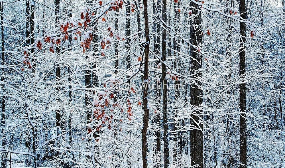 WINTER FOREST by Chuck Wickham