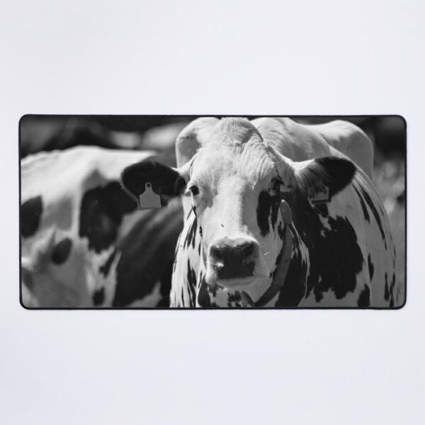 Portrait of a cow Desk Mat