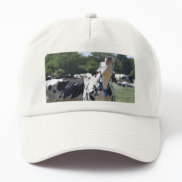 Mooo Dad Hat