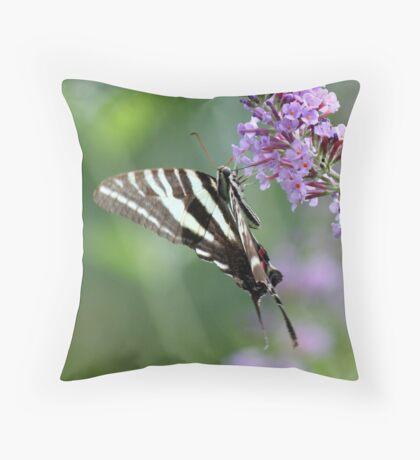 A to Zebra Throw Pillow