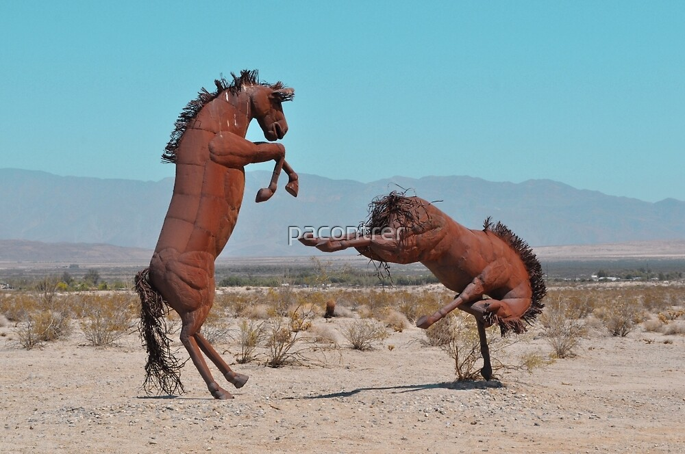 Rusted Rodeo by Paula Contreras