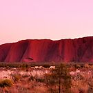 Ayers Rock Sunrise  by Karina  Cooper