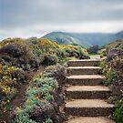 Distant Montara by Ellen Cotton