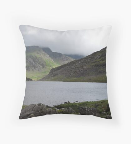 Within The Mist Throw Pillow