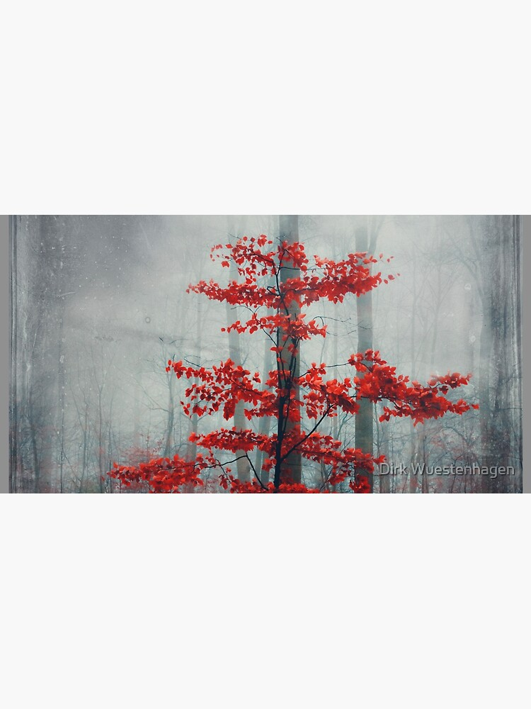 Wonder Tree - Small Beech Tree with Red Fall Foliage by DyrkWyst