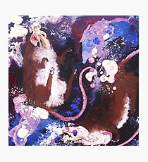 Lab Mice Photographic Print