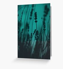 Lavender Silhouette Greeting Card