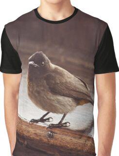 African Wildlife Shrike Decor Graphic T-Shirt