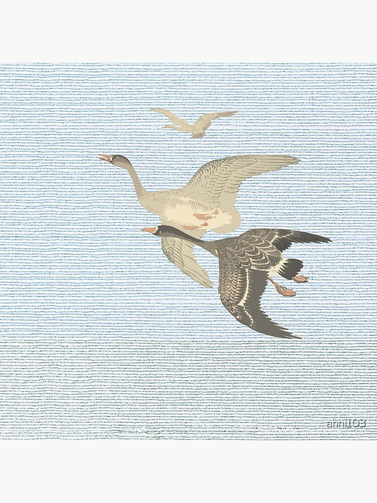 Nothing to match the flight of wild birds flying by anni103