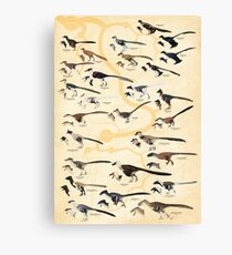 Dromaeosaurid Dinosaurs (version 2) Canvas Print