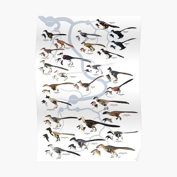 Dinosaurios Dromaosáuridos (versión 1) Póster