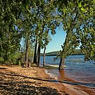 St Croix River Shoreline by Jimmy Ostgard