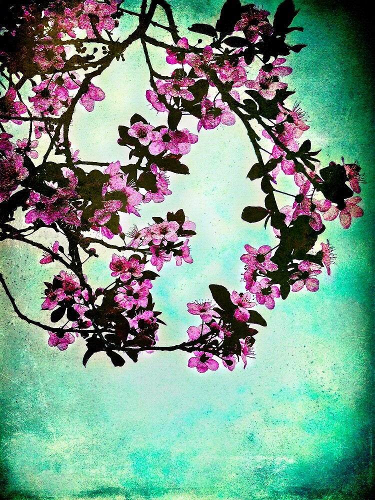 As blossoms bloom by Jo Williams