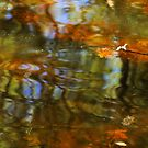 Abstract of the St Croix River 02 by Jimmy Ostgard