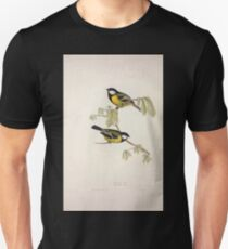 John Gould The Birds of Europe 1837 V1 V5 150 Great Tit Unisex T-Shirt