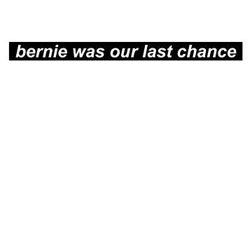Bernie Sanders 2016 by zoemeinke