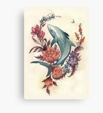 Floral Shark Canvas Print
