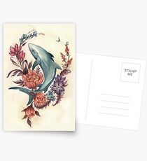 Floral Shark Postcards