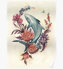 Floral Shark Poster