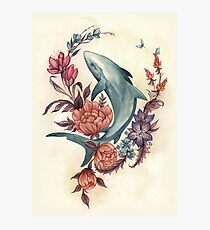 Floral Shark Photographic Print