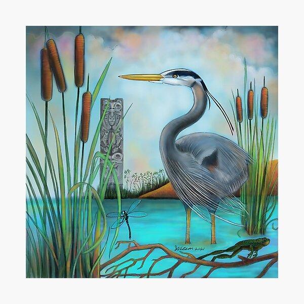 Squamish estuary heron. Photographic Print