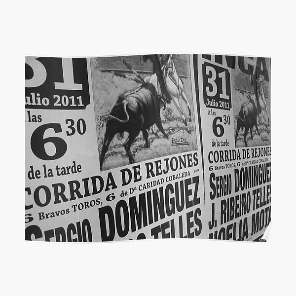 Torro Poster