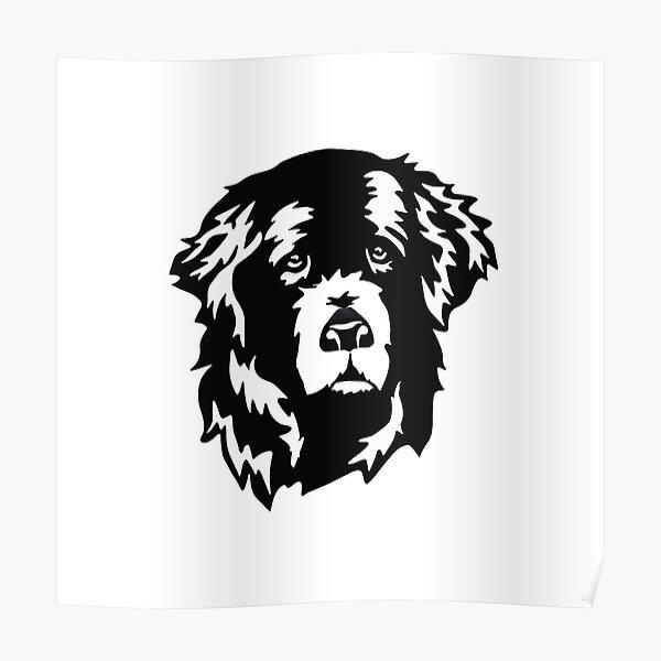 Sweet Newfoundland Dog Face Poster