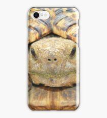 Tortoise Stare - Serious Intimidation of Fun iPhone Case/Skin