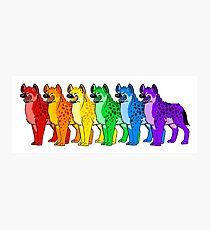 Hyena Rainbow  Photographic Print