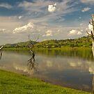 Lake Hume 2 by Werner Padarin