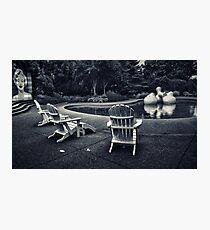 Modernist Garden Photographic Print
