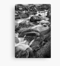 Cot Valley, Cornwall, UK, Stream 1 ~ Atlantic Coast Canvas Print