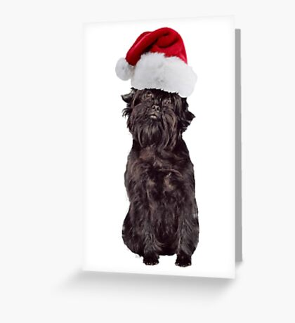 Affenpinscher Santa Claus Merry Christmas Greeting Card