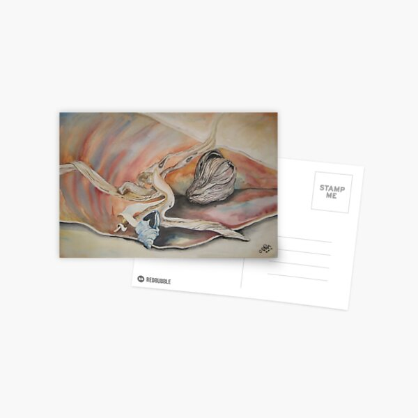Still Life ( Shells , Drift wood and coconut husk ) Postcard