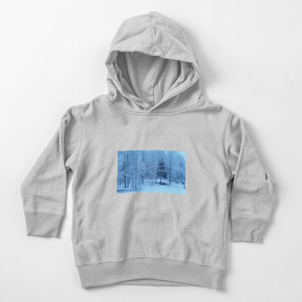 Snow on trees Toddler Pullover Hoodie