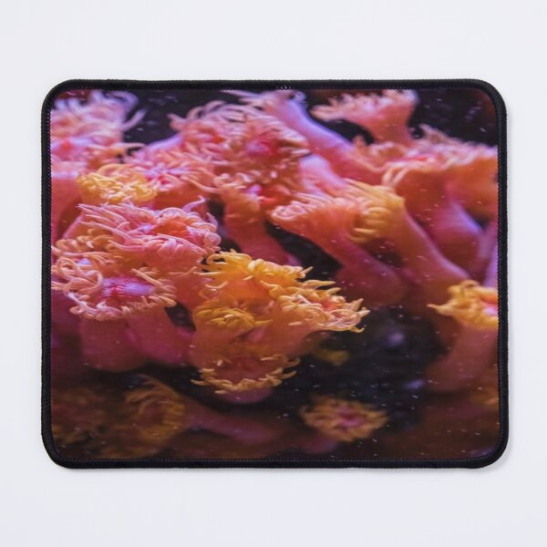 pink coral  Mouse Pad