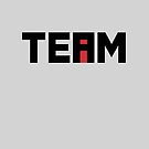 The i In TEAM by Haasbroek