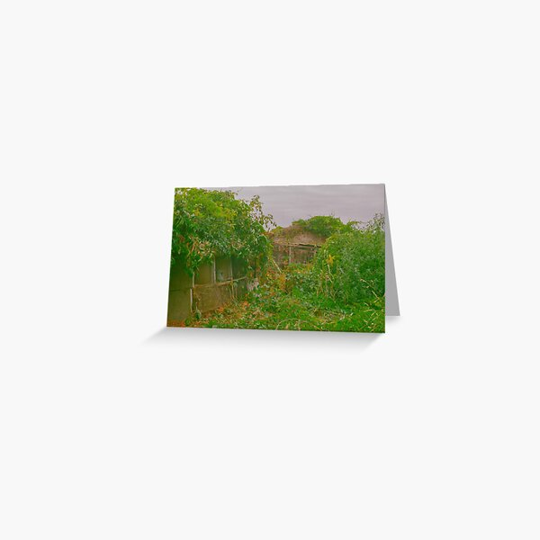 Nature takes back its right Greeting Card